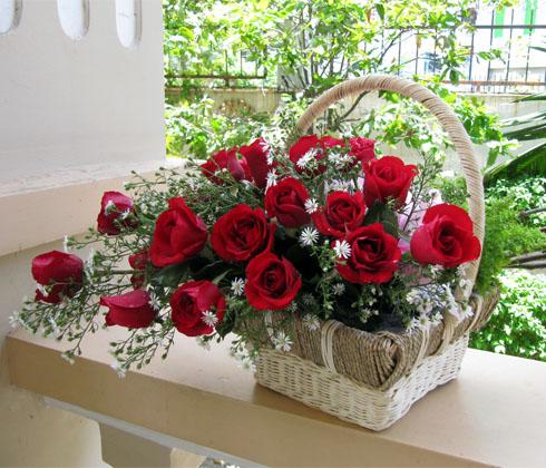 Hoa hồng cắt cành – hoa hồng Đà Lạt